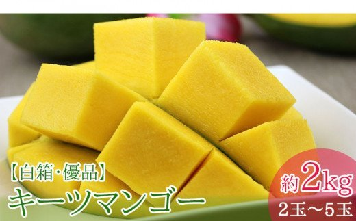 【2021年発送】拠点産地沖縄市の濃厚キーツマンゴー約2kg<白箱>