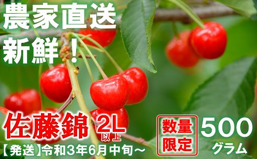 885【令和3年6月~発送】さくらんぼ 佐藤錦 約500g(秀・2L以上)