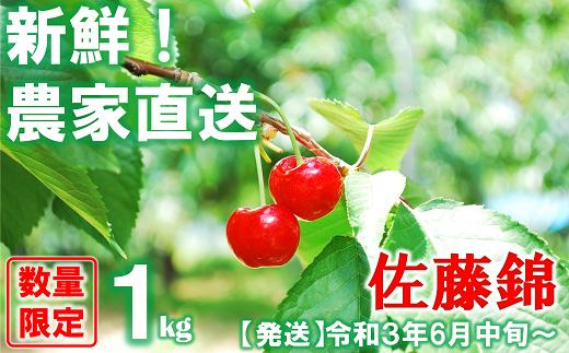 881【令和3年6月~発送】さくらんぼ 佐藤錦 約1kg(秀・L以上)