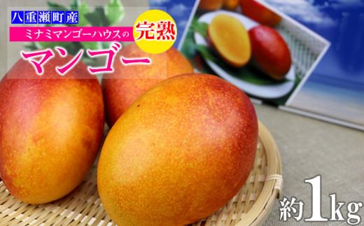 【2021年発送】ミナミマンゴーハウスの完熟マンゴー約1kg