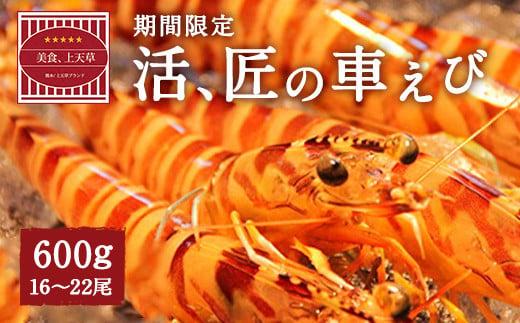 期間限定!【上天草市ブランド認証品】活、匠の車えび600g(約16~22尾)