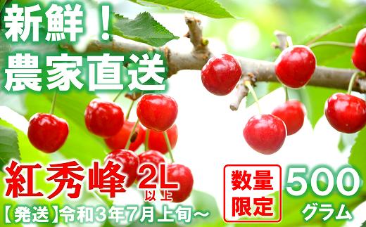 892【令和3年7月発送】さくらんぼ 紅秀峰 約500g(秀・2L以上)