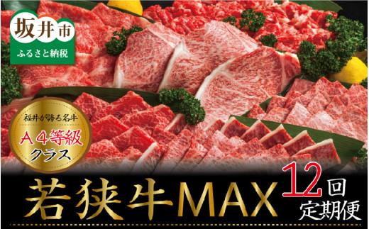 【定期便 12回コース】 肉好き大集合!若狭牛三昧MAX!! 定期便!! [N-3202]