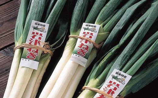A-6 【先行予約】朝来市特産「岩津ねぎ」2kg(箱入り)