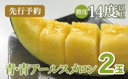 A-384 【先行予約】青・青アールスメロン 2玉入(2021年7月より発送)