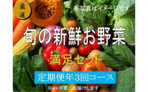 No.1002 大人気!旬の新鮮お野菜 満足セット(詰め合わせ)【定期便3回】