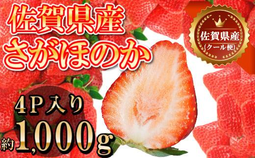 B192佐賀県産さがほのか合計約1㎏ 250g×4P 苺 いちご イチゴ