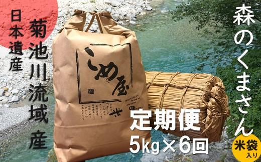 Z5 定期便 熊本県玉名産お米「森のくまさん」(5kg×6か月)
