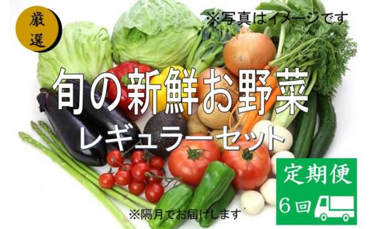 No.1008 大人気!旬の新鮮お野菜 レギュラーセット(詰め合わせ)【定期便6回】