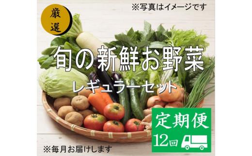 No.1009 大人気!旬の新鮮お野菜 レギュラーセット(詰め合わせ)【定期便12回】