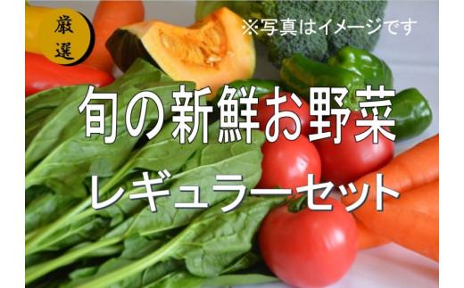 No.1000 大人気!旬の新鮮お野菜 レギュラーセット(詰め合わせ)【訳あり】
