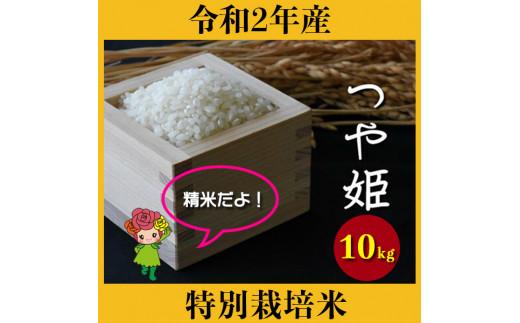 米 10kg つや姫 特別栽培米 精米 令和2年産
