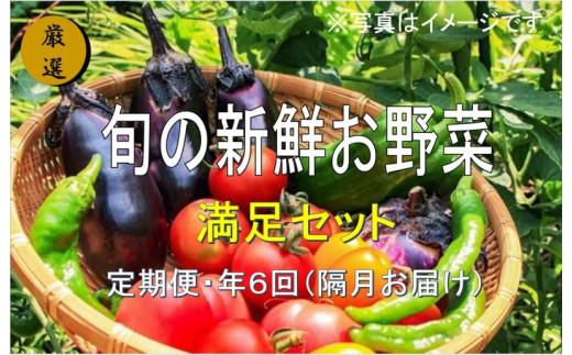 No.1004 大人気!旬の新鮮お野菜 満足セット(詰め合わせ)【定期便6回】