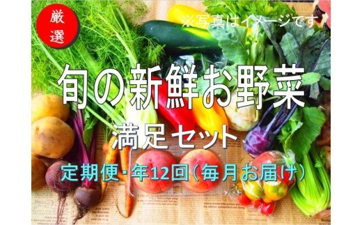 No.1005 大人気!旬の新鮮お野菜 満足セット(詰め合わせ)【定期便12回】