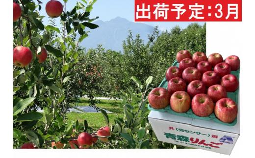 [№5228-0347]3月 訳あり EM葉取らずサンふじ約10kg 糖度13度以上【弘前市産・青森りんご】
