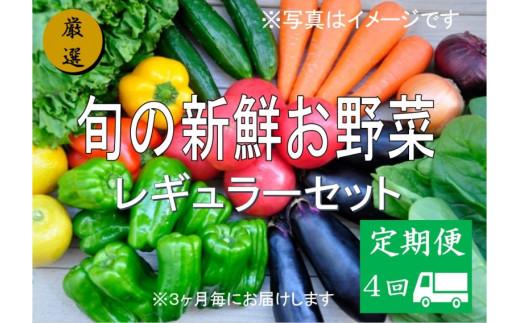No.1007 大人気!旬の新鮮お野菜 レギュラーセット(詰め合わせ)【定期便4回】