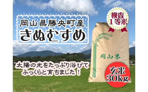 S61 勝央町産【きぬむすめ】玄米30㎏