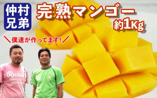 仲村兄弟のマンゴー1Kg 《コンテスト連続入賞!》【2021年発送】