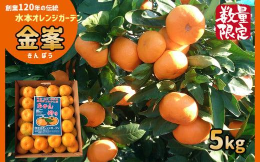 AB1 温州みかん【限定50セット】高級品種「金峯5kg」