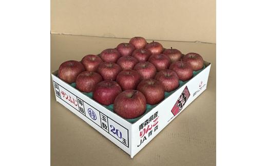 JA青森 青森県産りんご「サンふじ」約5kg_A1-1【1127895】