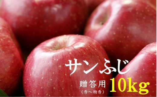 No.1011 【2021年度産先行受付】りんご サンふじ 10kg 大玉 【贈答用】 林檎 リンゴ(秀~特秀)