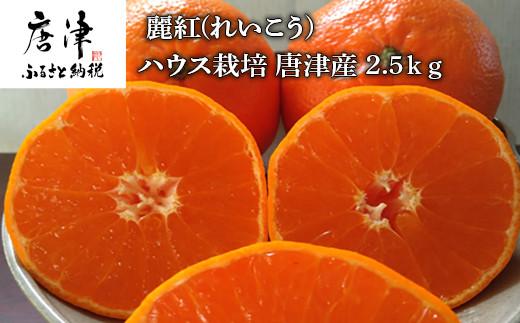 麗紅(れいこう) ハウス栽培 唐津産 2.5kg【令和3年1月下旬発送】