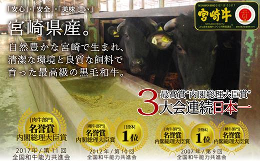 S-13 宮崎牛 ヒレ ブロック 計500g 万能だれ付き ステーキ