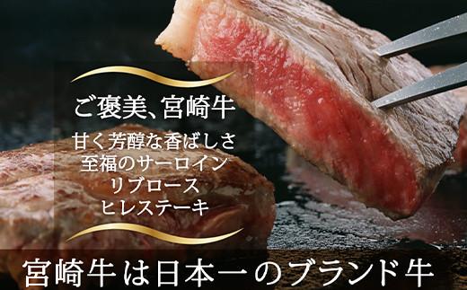 S-14 宮崎牛 ステーキ 食べ比べ セット 計600g 万能だれ付き