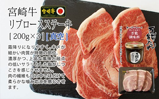 S-11 宮崎牛 リブロース ステーキ 600g 万能だれ付き 牛肉