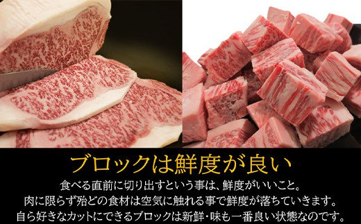 S-16 宮崎牛 サーロイン ブロック 1kg 万能だれ付き ステーキ