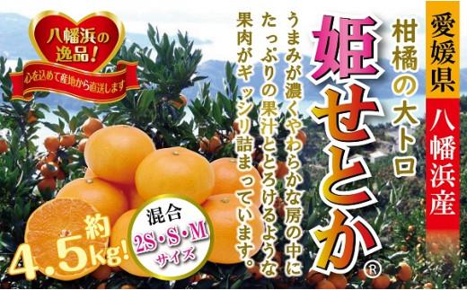 C39-33.柑橘の大トロ!「姫せとか」約4.5kg