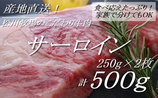 AE-14 【数量限定】松川牧場のこだわり牛肉 サーロイン250g×2枚(500g)