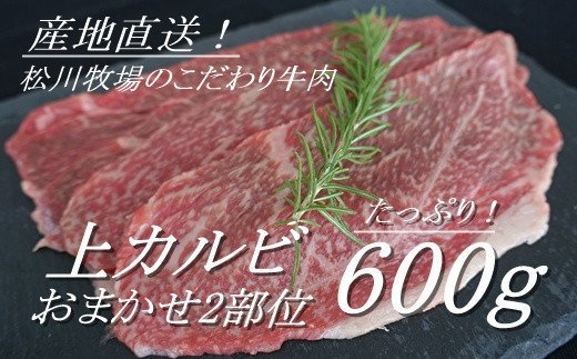 AE-18 【数量限定】松川牧場のこだわり牛肉 上カルビ600g(おまかせ2部位)