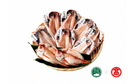 日本海西部産 開きのどぐろ干物9枚(大山ブランド会)高島屋 タカシマヤ 0297.50-N5