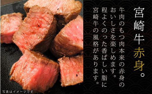 S-2 宮崎牛 赤身 ステーキ 100g×2枚 計200g 万能だれ付き