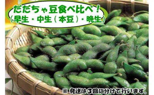 C01-304 【令和3年分先行予約】特産だだちゃ豆食べ比べ!(早生→中生(本豆)→晩生)各種2kg(500g×4袋)(※3回に分けて発送します)合計6kg