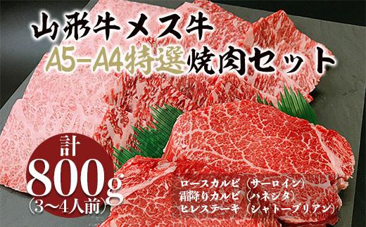 FY20-675 山形牛メス牛 A5-A4 特選焼肉セット(3~4人前)