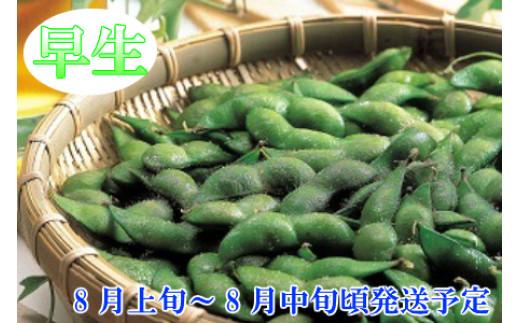 A01-643 【令和3年分先行予約】鶴岡特産 白山産だだちゃ豆(早生) 2kg(500g×4袋) 枝豆