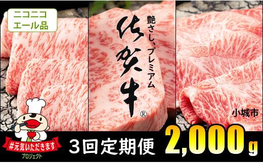 D50-036 【エール品~12月18日受まで】3回定期便 佐賀牛(2,000g)