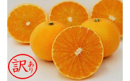【訳あり品】みかん職人の夢オレンジ 3kg 4L~Mサイズ(9~18玉入り)