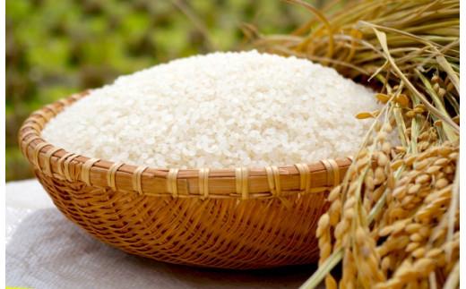 農家の方々が丹精込めて栽培したお米です。