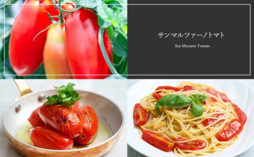 【完熟収穫 サンマルツァーノトマト】サンマルツァーノリゼルバ 約3kg