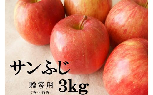 No.1012 【2021年度産先行受付】りんご サンふじ 3kg 大玉 【贈答用】 林檎 リンゴ(秀~特秀)