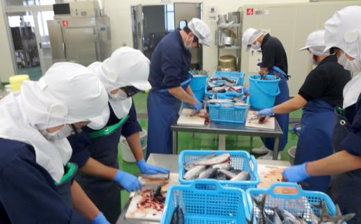 魚の内臓を綺麗に取り出します