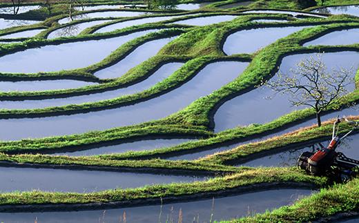 長狭地域は北側に清澄山系、南側に嶺岡山系、その中央に加茂川が流れる東西に長い田園地帯。