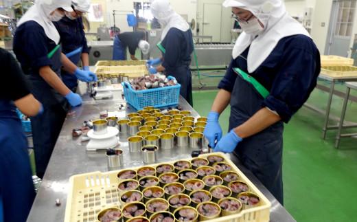 綺麗に形を整えながら缶詰に魚を入れていきます