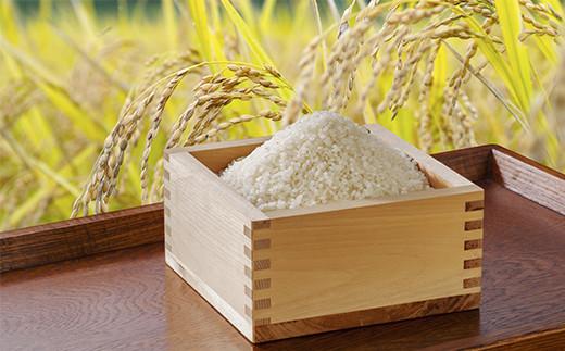 玄米・精米からお選びいただけます。