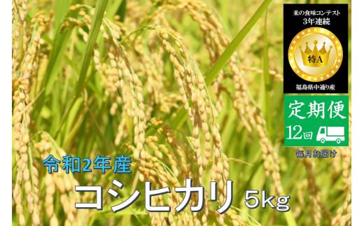 No.1022  【定期便12回】令和2年産 コシヒカリ 5kg 精米 (毎月お届け)