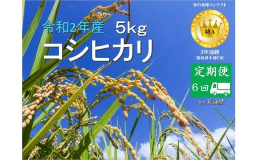 No.1020  【定期便6回】令和2年産 コシヒカリ 5kg 精米 (6か月連続お届け)