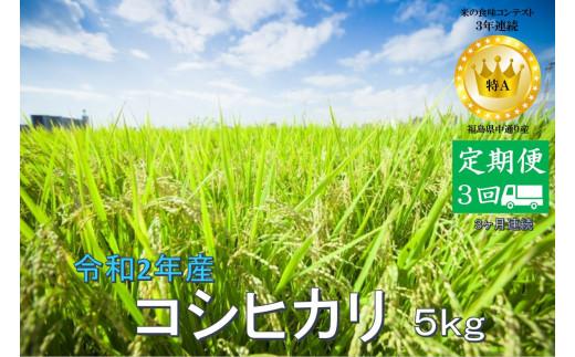 No.1019  【定期便3回】令和2年産 コシヒカリ 5kg 精米 (3か月連続お届け)